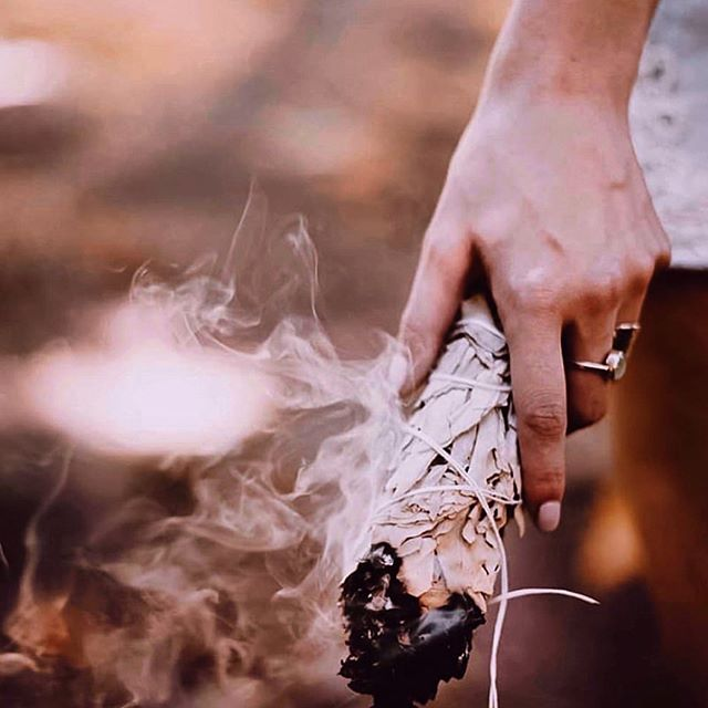 The many meanings of 'SAGE' The Sage soul type embodies the essence of expressive communication. Meanwhile the ancient ritual of burning the sage herb cleanses a person or a space.  The Latin for sage, 'Salvia,' stems from the word 'to heal.' The other qualities of sage when burned, such as giving wisdom, clarity and increasing spiritual awareness. 🙏🏼