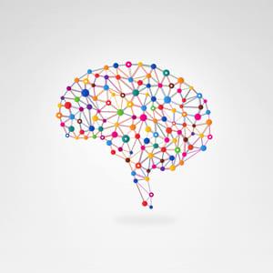 complexité cerveau .jpg
