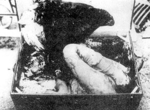 The inside of the trunk with Kaye's body.