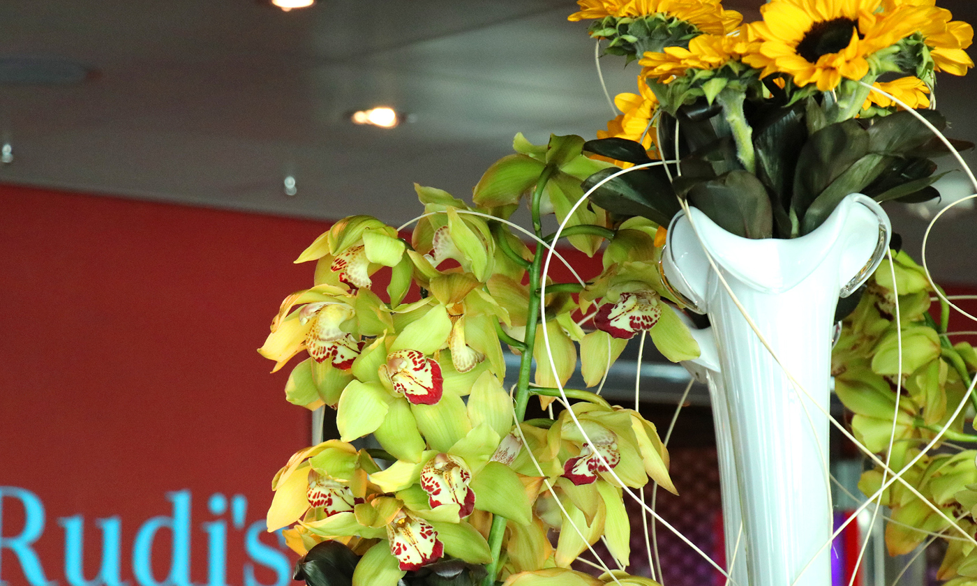 It's raining Orchids