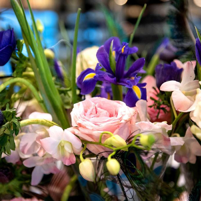 Dianthus-Yacht-Flowers-Details-2.jpg