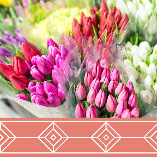 Miami-Flowers-Trade-Shows.jpg