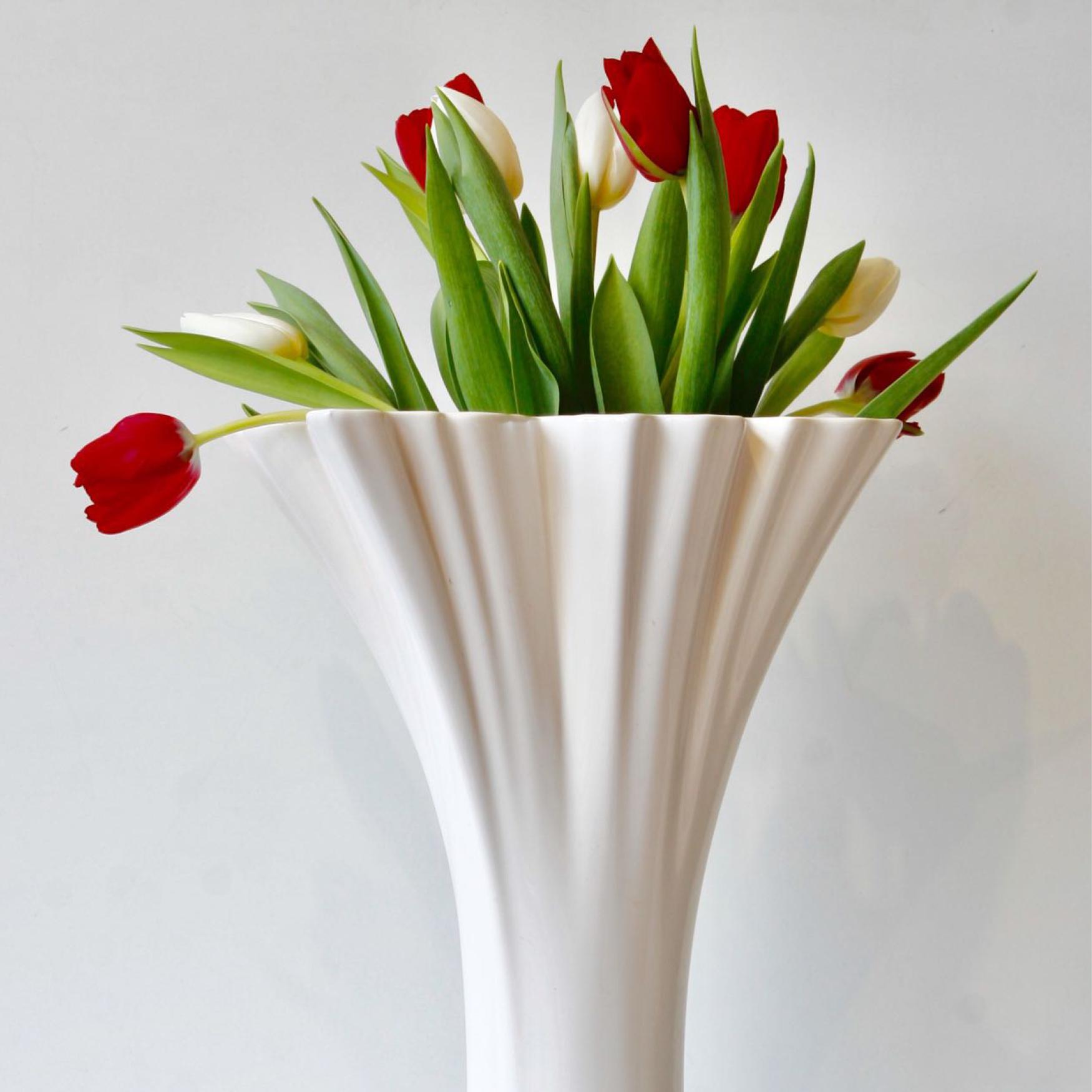 Dianthus-Flowers-Gallery-Vases-1902-12.jpg