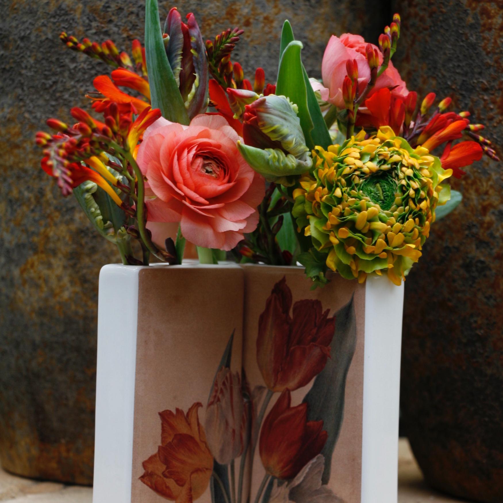Dianthus-Flowers-Gallery-Vases-1902-15.jpg