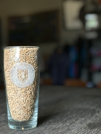 Grain to Glass - The story of our beer.