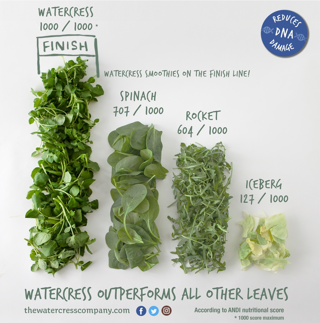 See how watercress is the winner of all the salads - The Super Salad.