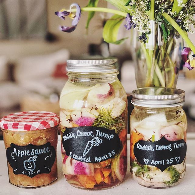 Gettin a little artsy with my food preservation! 😉This was fun, now I hope it turns out well 😅 Just started cucumbers (regular and pickling varieties) at the farm, and I can't waaaait to make pickles! 😋 ⠀ Strawberries are also slooowwwly beginning to sprout, and the plants started in the greenhouse are getting a few berries 🍓And ASPARAGUS. Have you ever eaten asparagus that you plucked from the ground?! It's infinitely better than anything you'd get from the store.  Soooo tender and flavorful. Okay that's it for now, I'm excited for spring 😬
