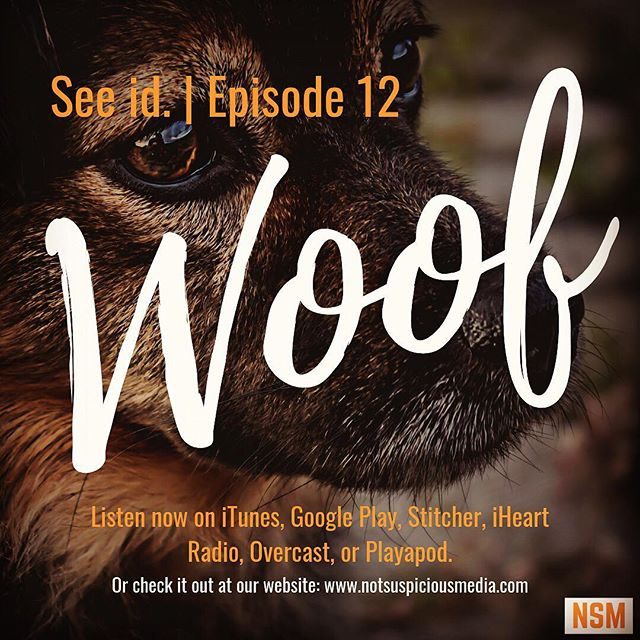 All new episode of @seeidpodcast Go take a listen to Ryan and Luke! #podcast #blogger #law #lawschool #legal #student #doggo #dogs #insta #instagram #new #content #learn #lawyer