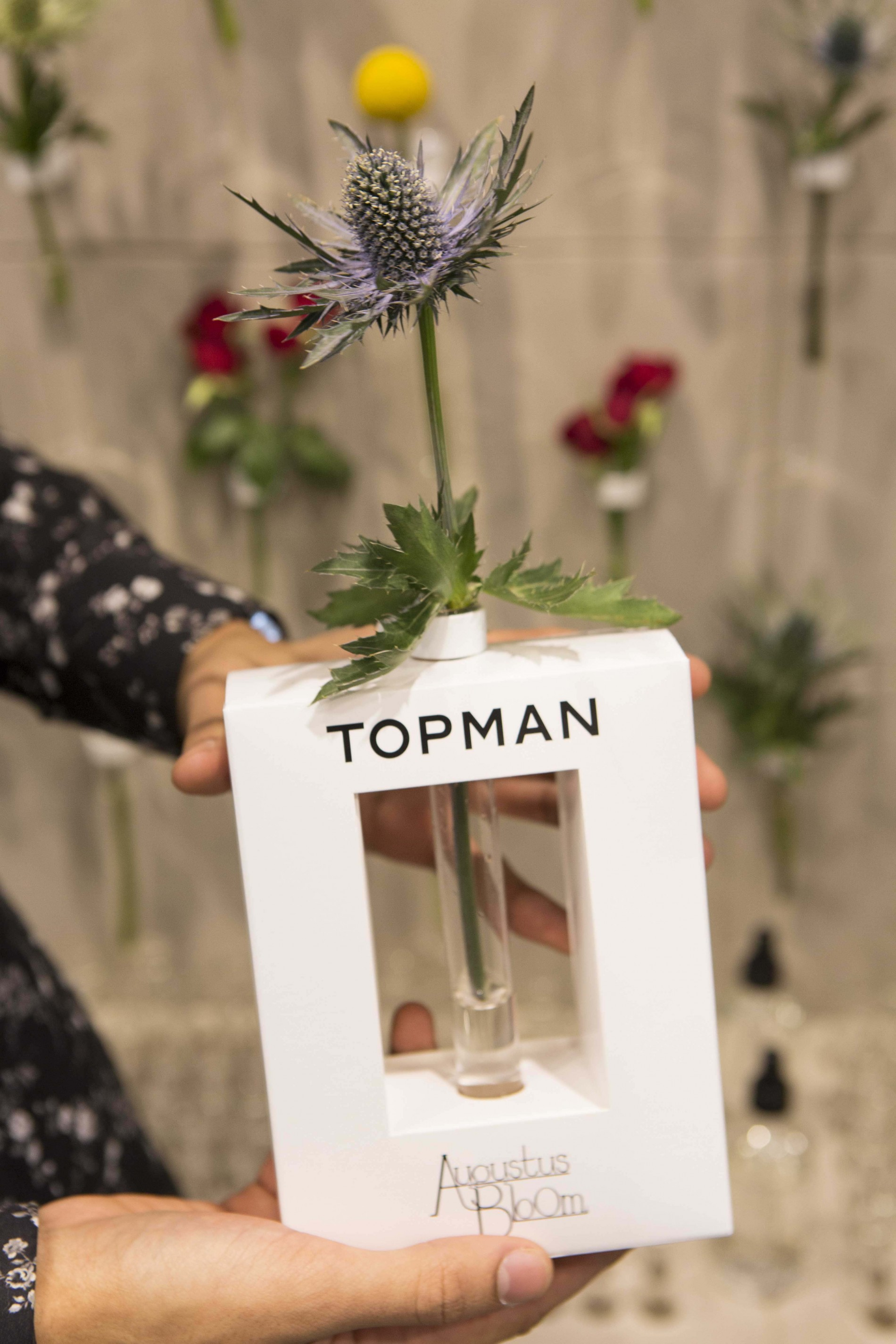 Magnetic Fridge Vase for Topman