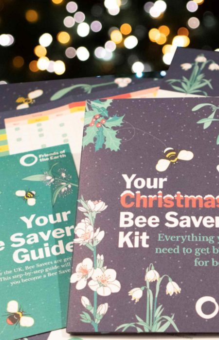 friends_of_the_earth_bee_saver_christmas_gift_guide-450x700.jpeg