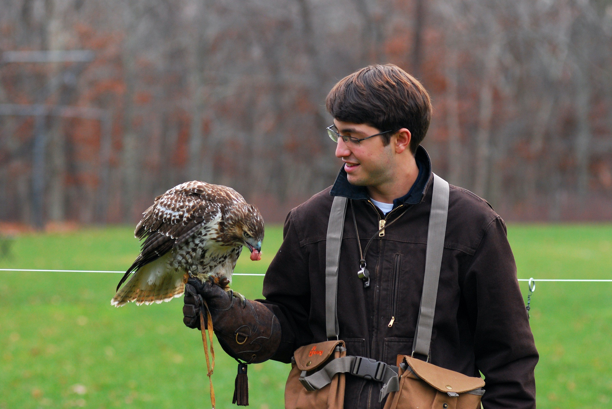 Samuel Kramer '13 with a red-tailed hawk he trained for his Senior Project on falconry