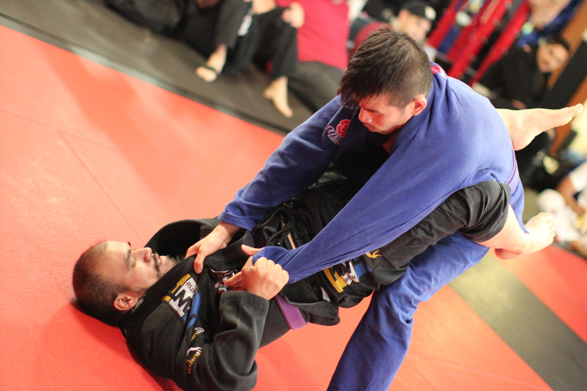 jiu-jitsu-classes-for-adults.JPG