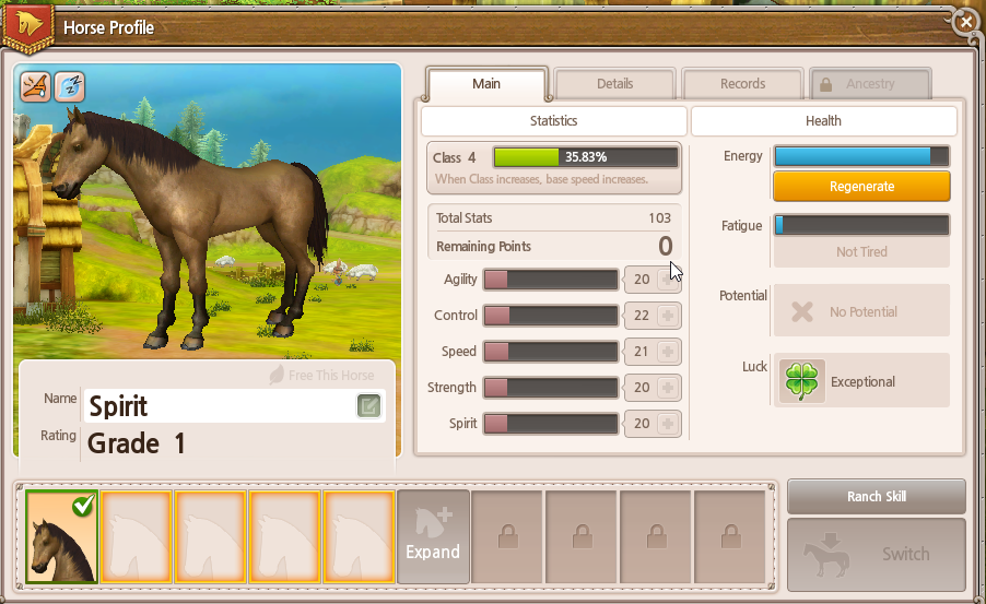 My horse's character sheet