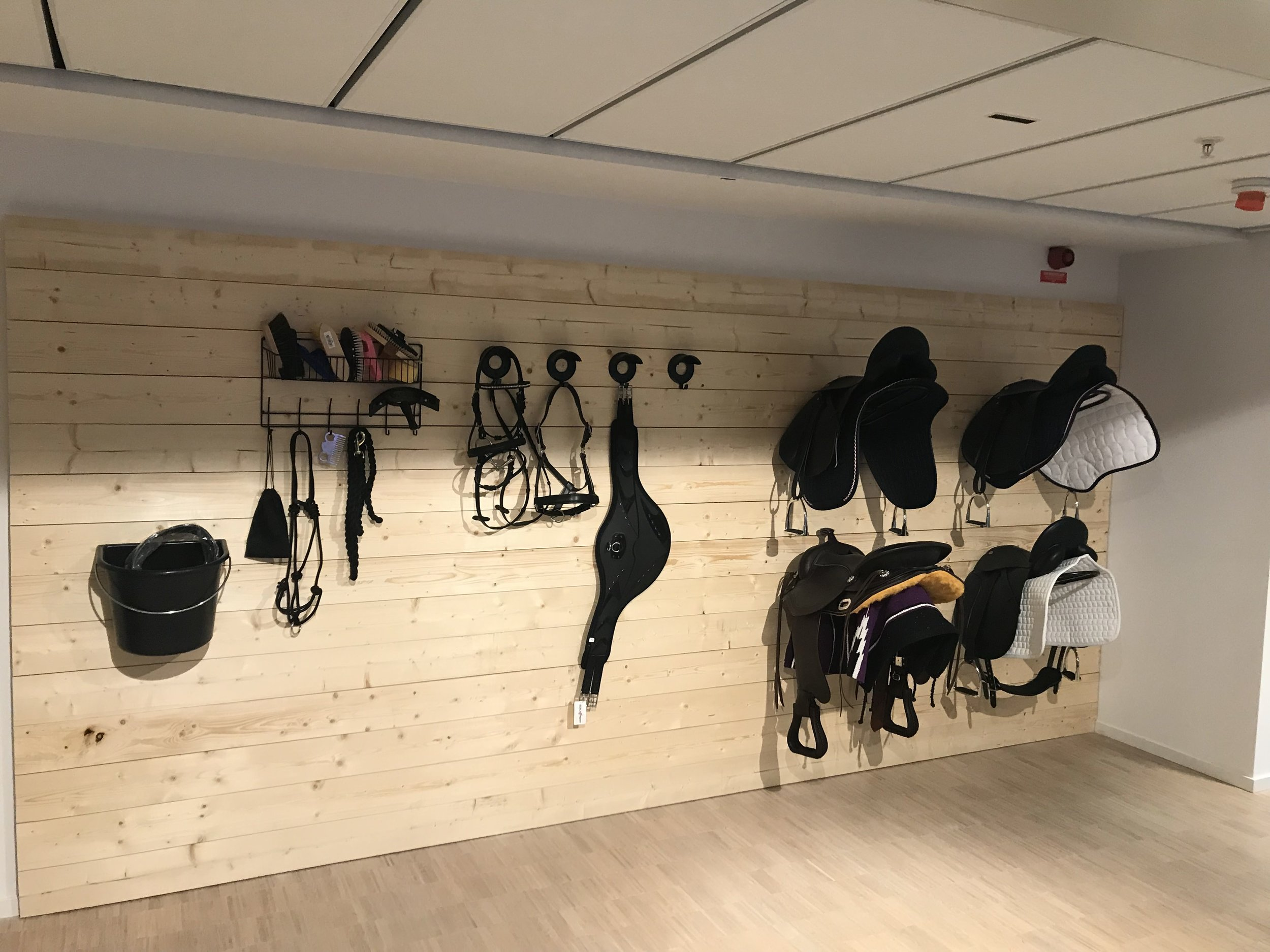 SSO HQ may well be the only game dev studio with its own tack room.