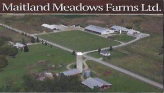Maitland Family Farm Logo.JPG