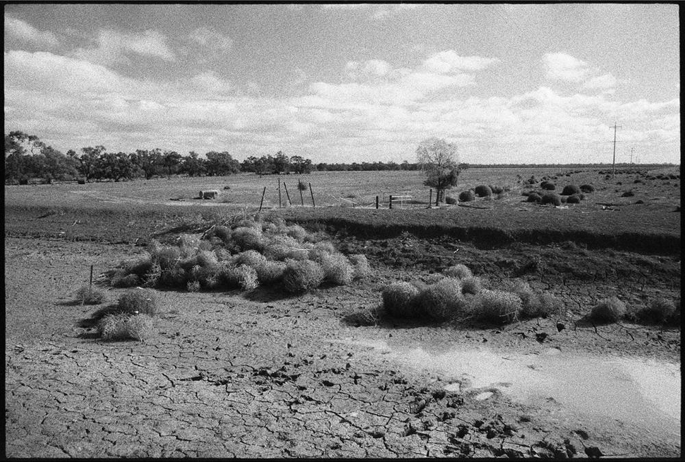 Hay-Griffith-18_108.jpg