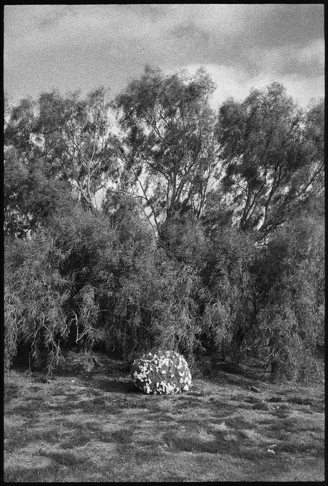 Hay-Griffith-18_121.jpg