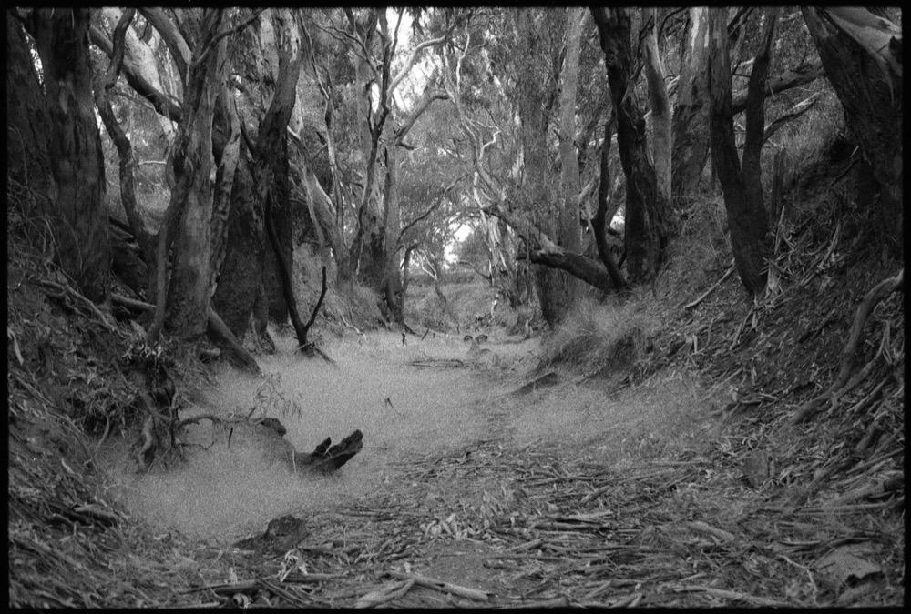 TOAF 10 Victoria Road Trip '17_489.jpg