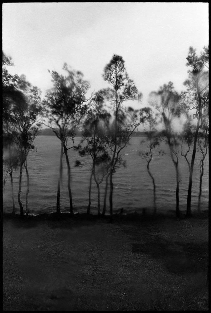 AQC 17 Coomba Park_018a.jpg