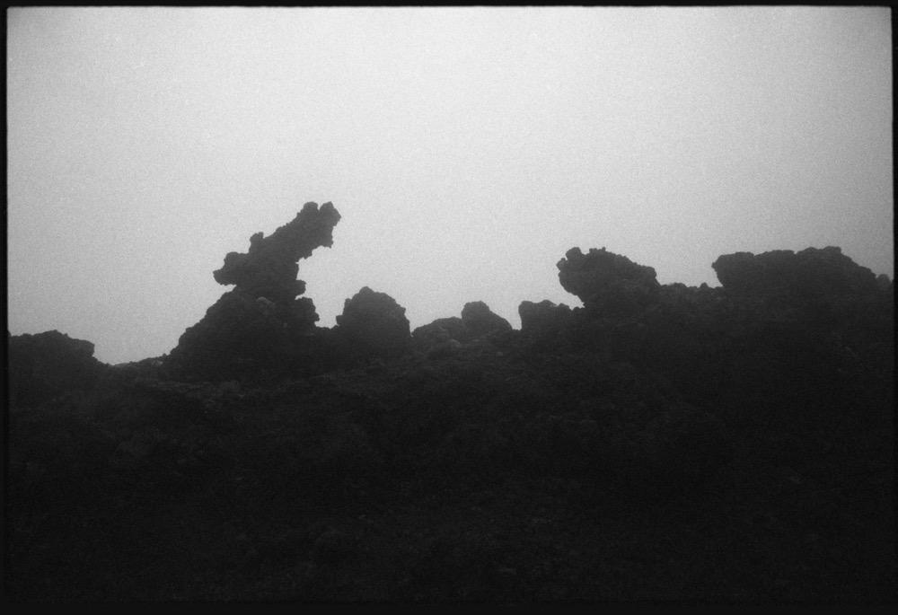North Island_118.jpg