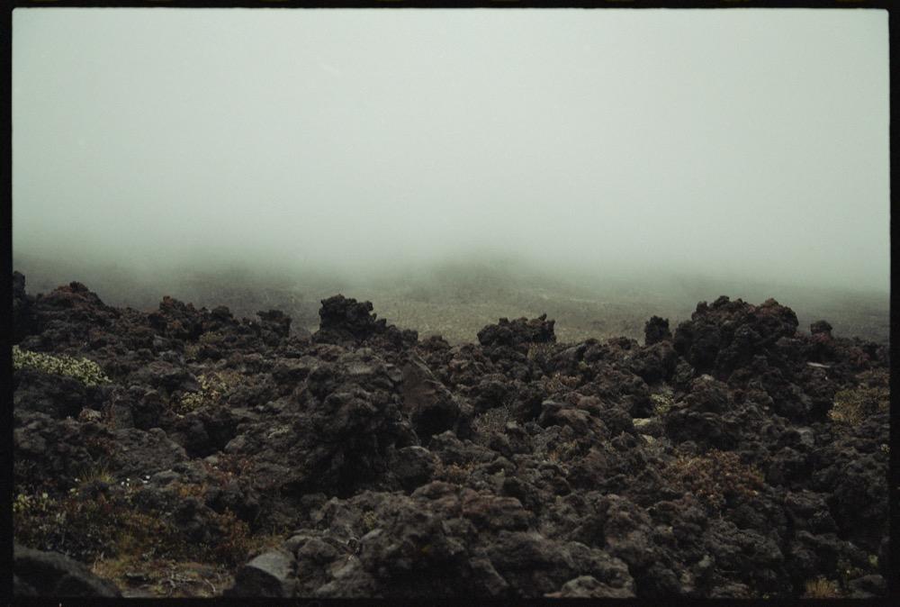 North Island_140.jpg