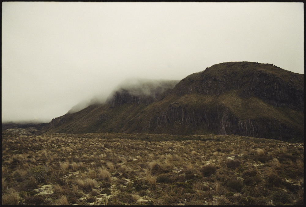 North Island '17_090.jpg