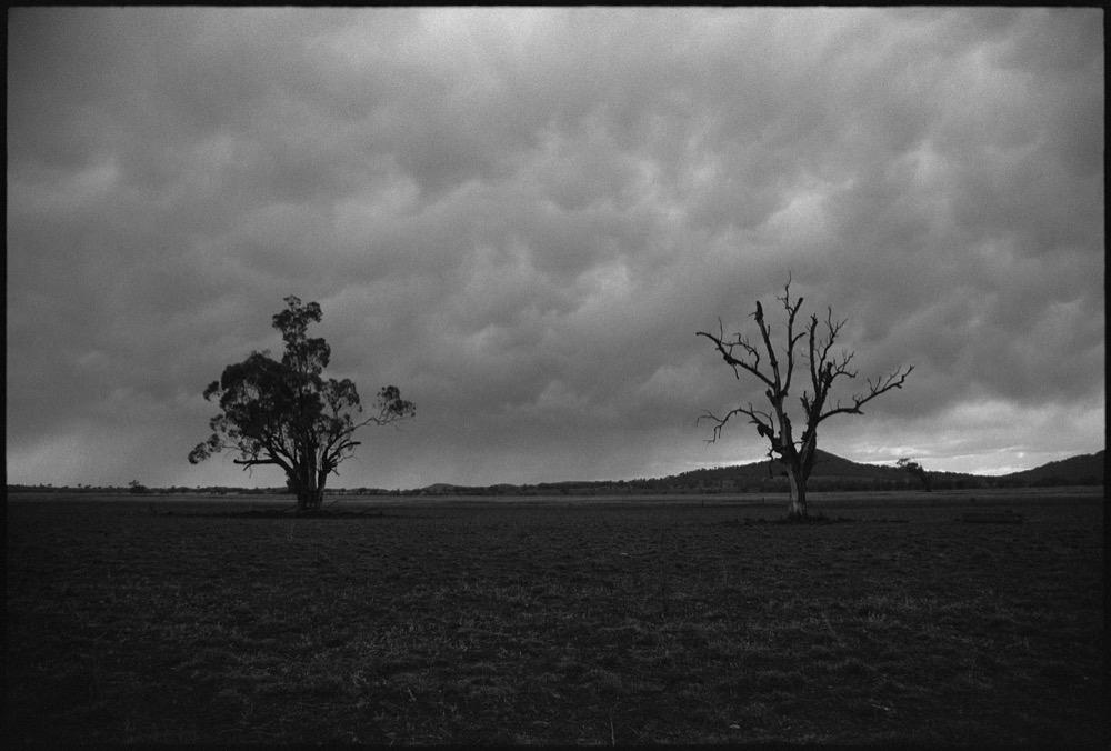 NSW-QLD '18_145.jpg