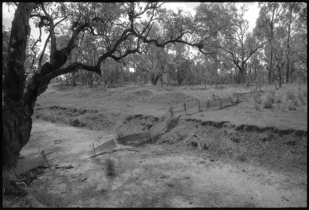 NSW-QLD '18_233.jpg