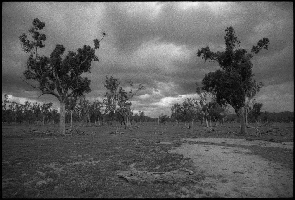 NSW-QLD '18_246.jpg