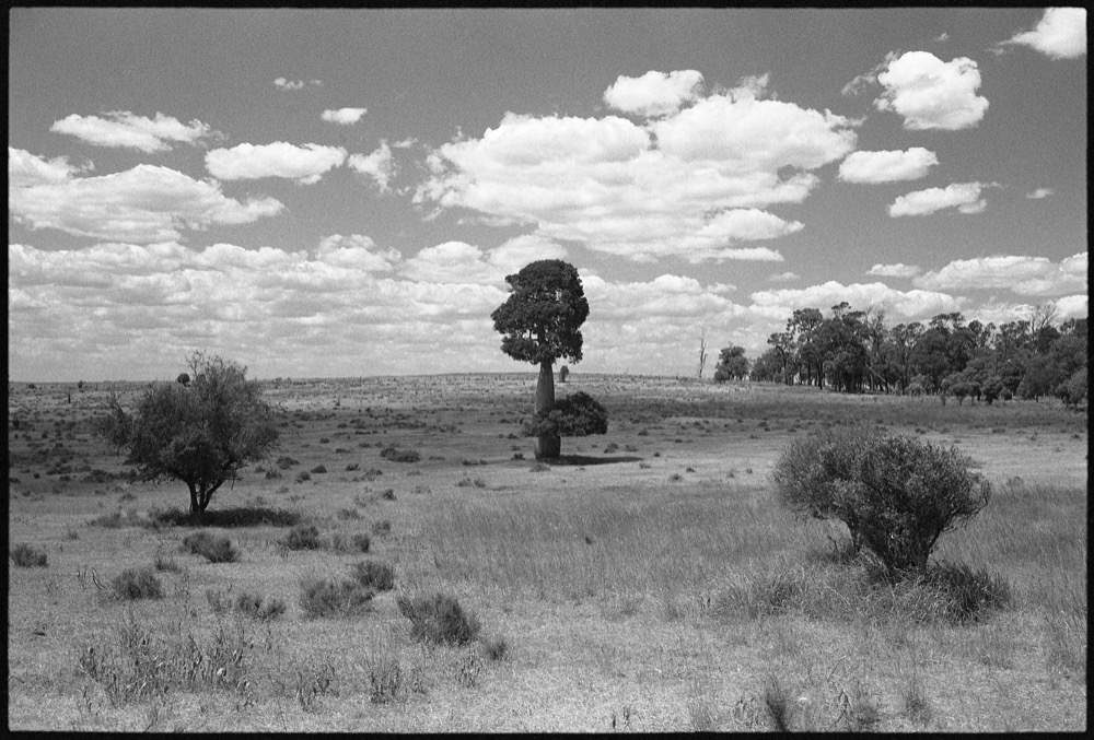 NSW-QLD '18_274.jpg