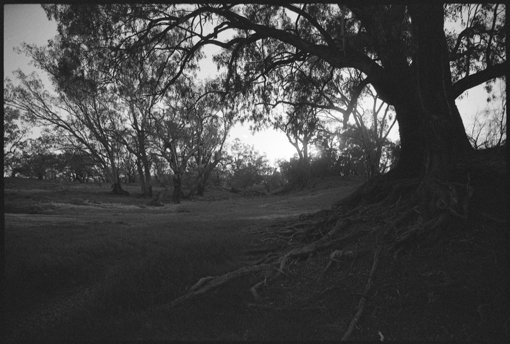 NSW-QLD '18_293.jpg