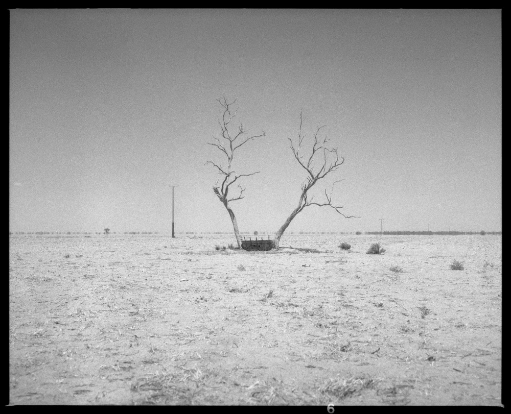 NSW-QLD '18_340.jpg