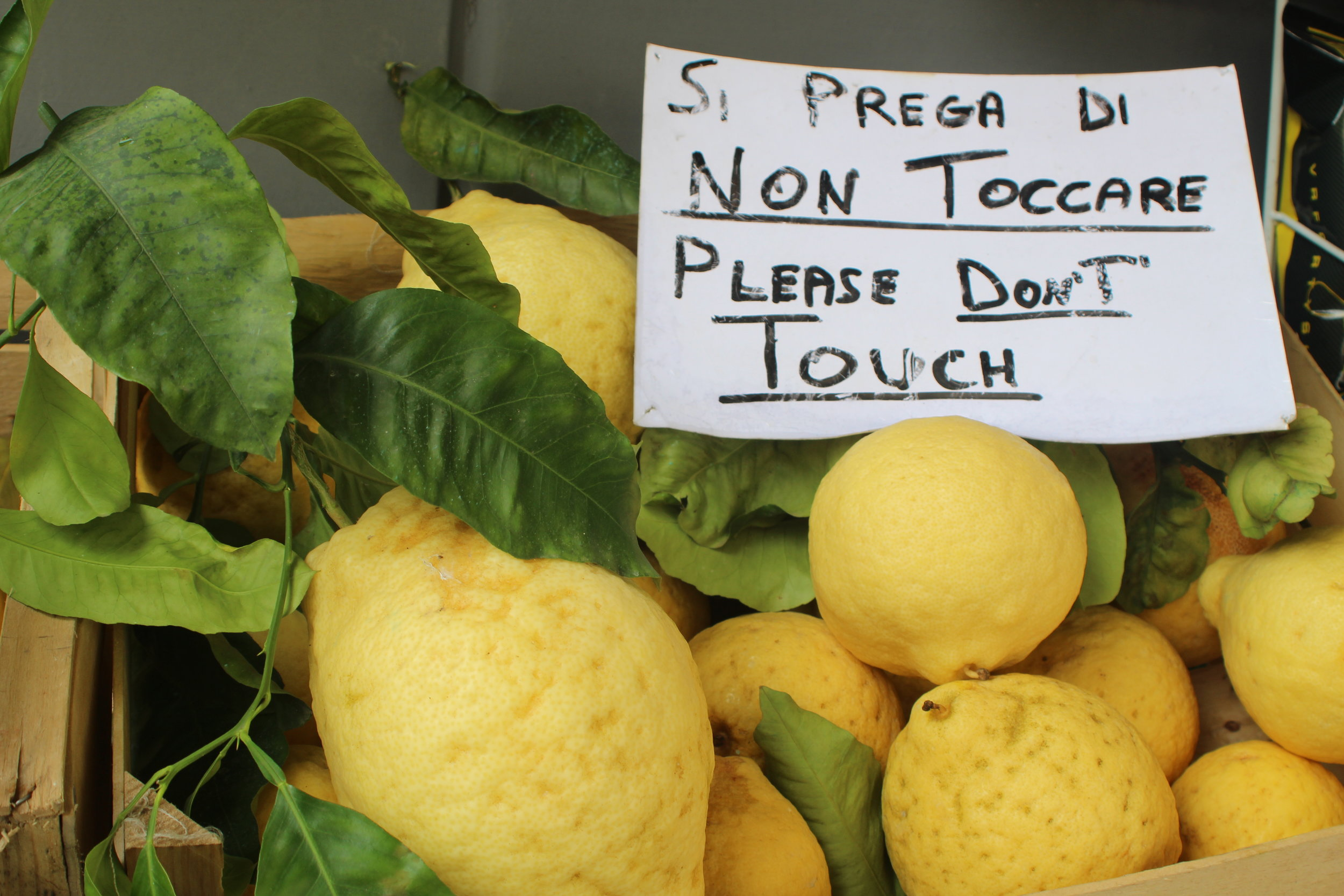 These lemons might not be pretty, but they make an amazing limoncello.