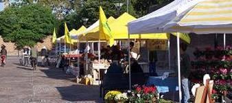 Ferrara farmers market
