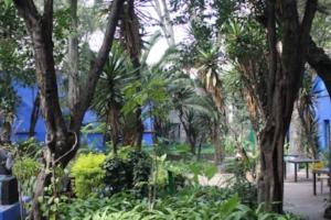 Garden at the Frida Kahlo Museum (photo: Brent Petersen)