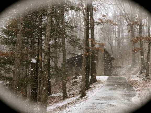 Spivey Mountain Cabin