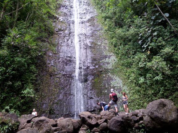 Manoa Falls (photo: Brent Petersen)