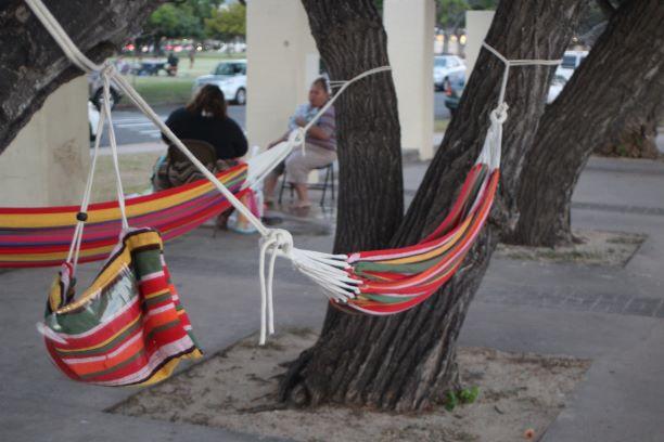 Hammocks at Ala Moana Beach Park