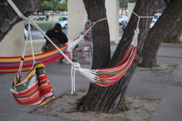 Hammocks at Ala Moana Beach Park (photo: Brent Petersen)