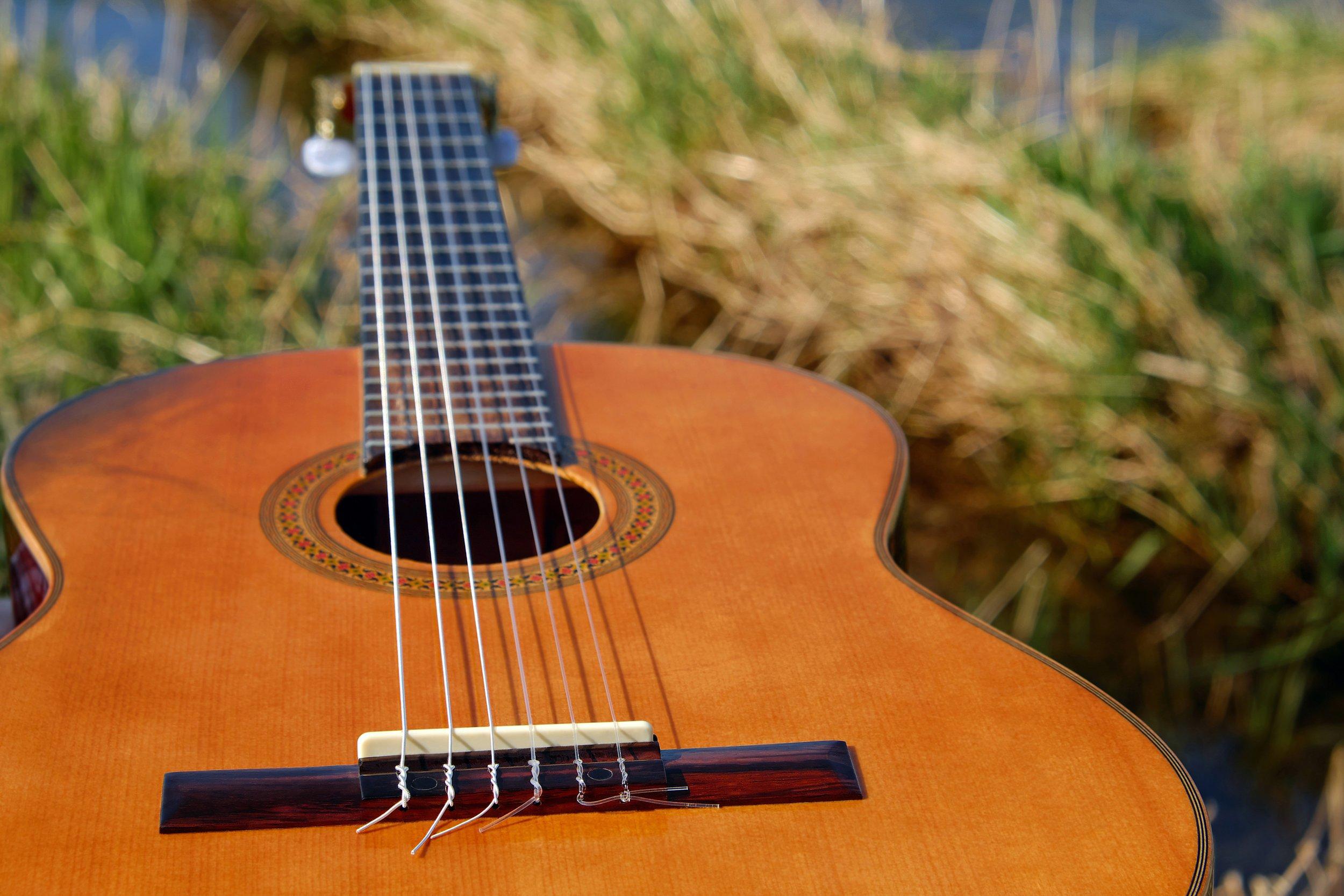guitar-2276181.jpg