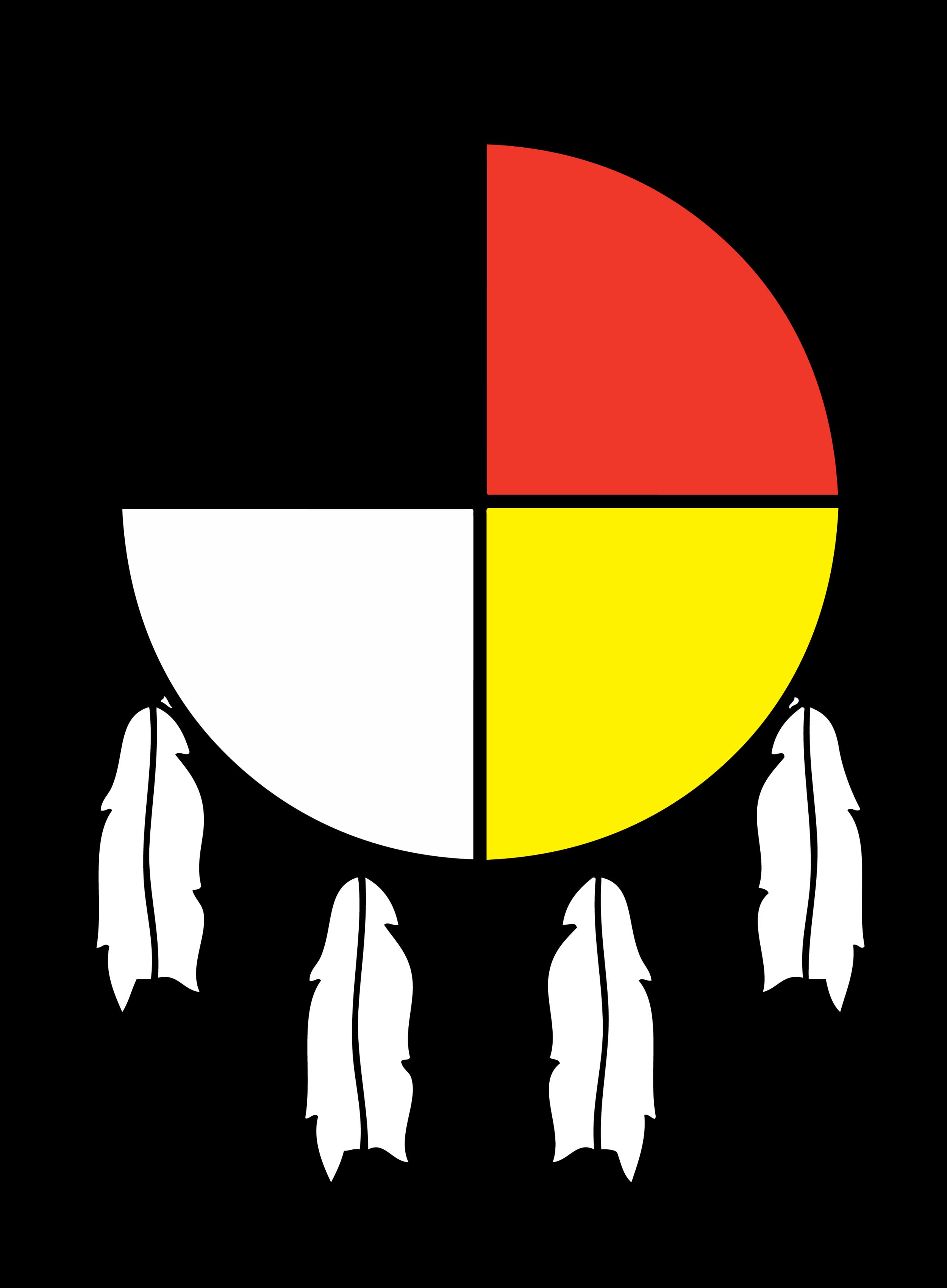 NAYA-logo_Color_transparent background.png