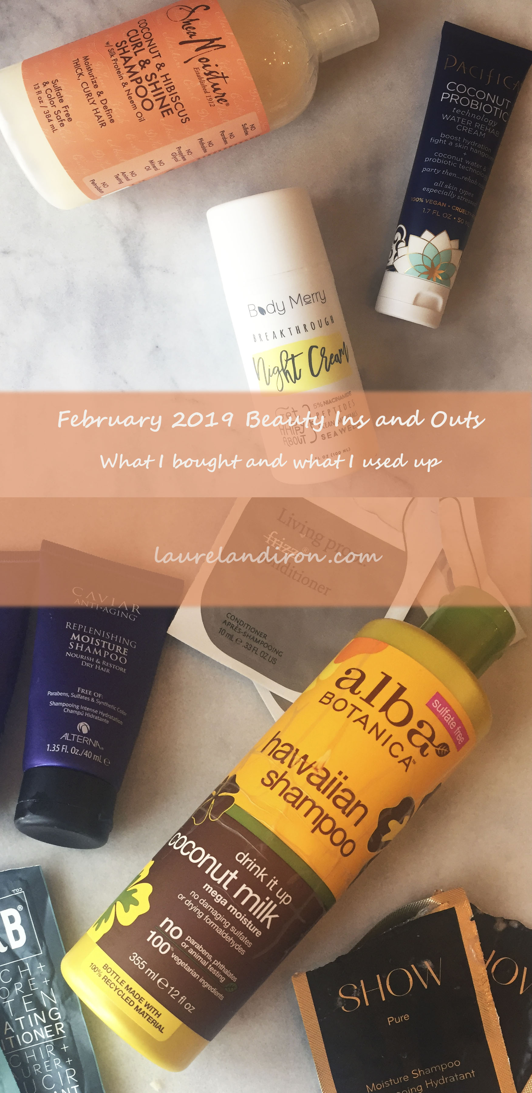 Feb 2019 Beauty Purchases and Pans