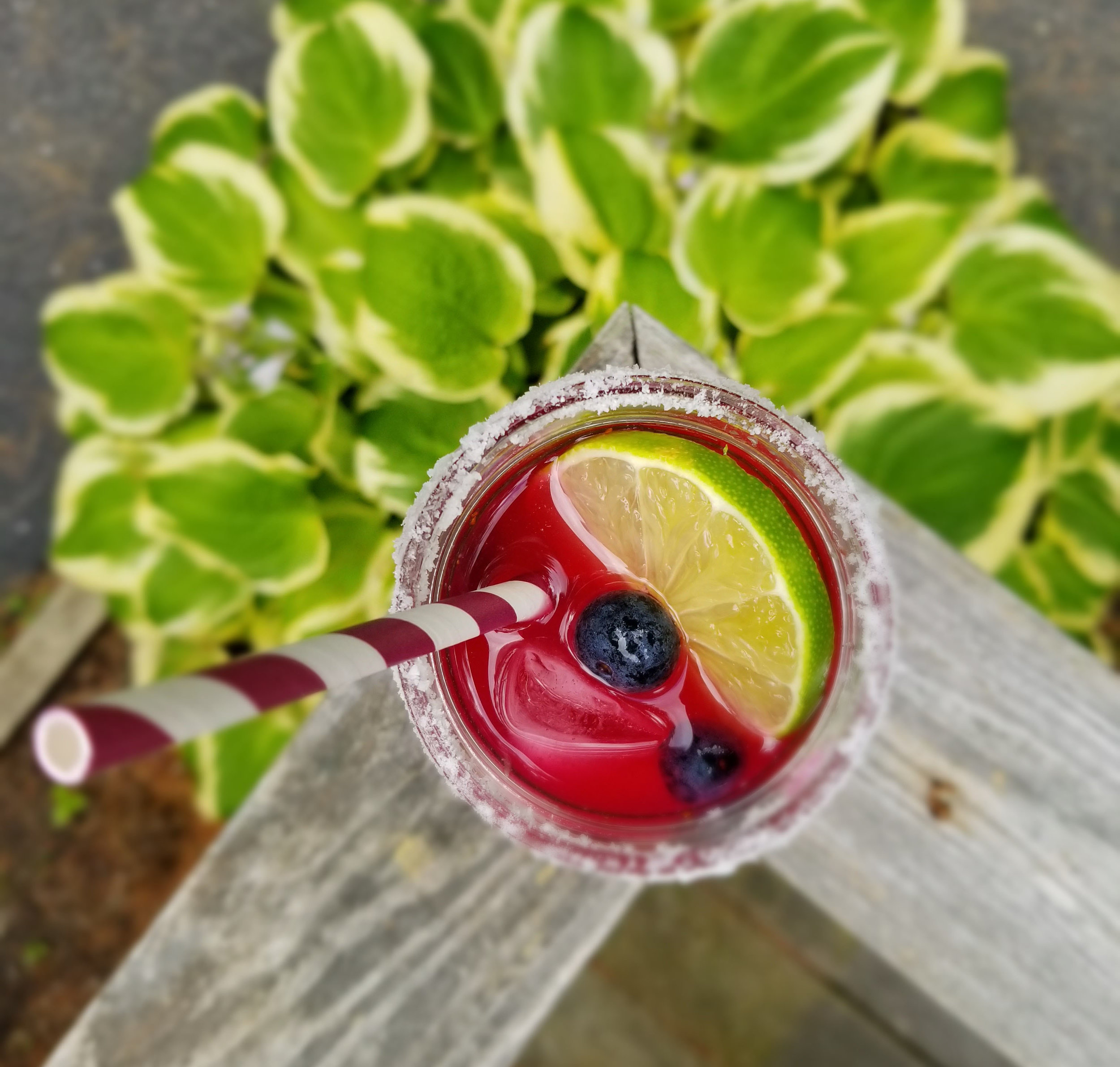 Blueberry Margarita Recipe | Laurel and Iron