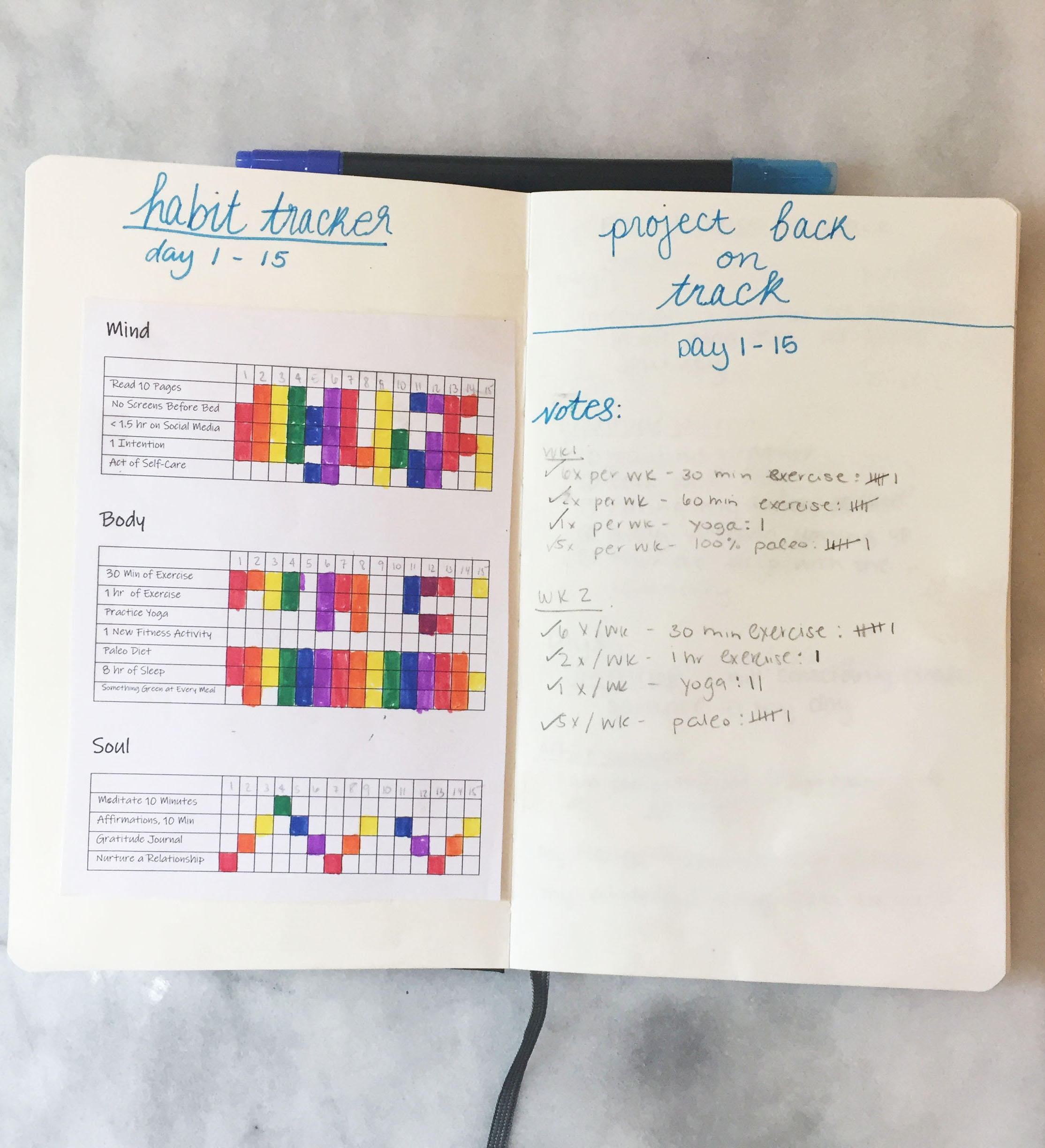 Project Back on Track - Habit Tracker | #projectbackontrack | Laurel and Iron