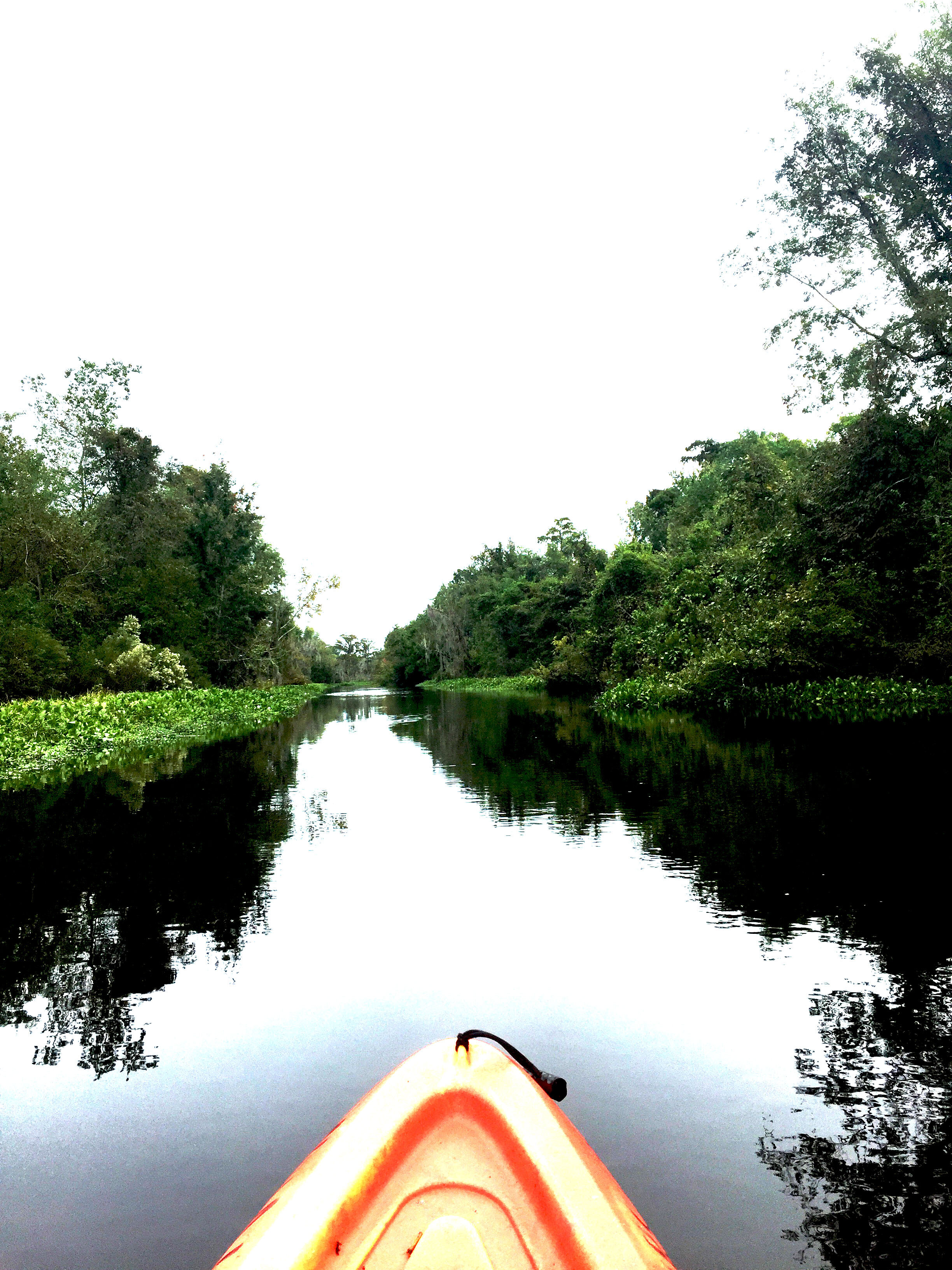 4 Days in New Orleans | NOLA Kayaking Tour | Laurel and Iron