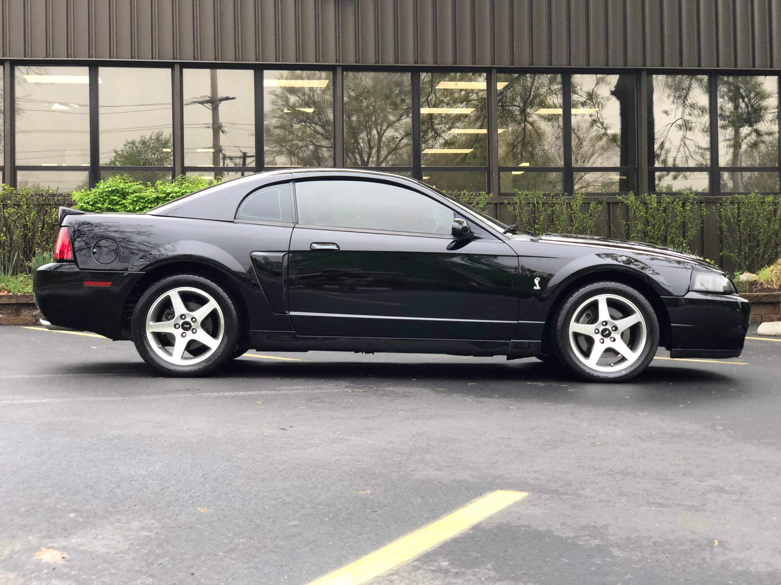 2003 Ford Mustang Svt Cobra Car