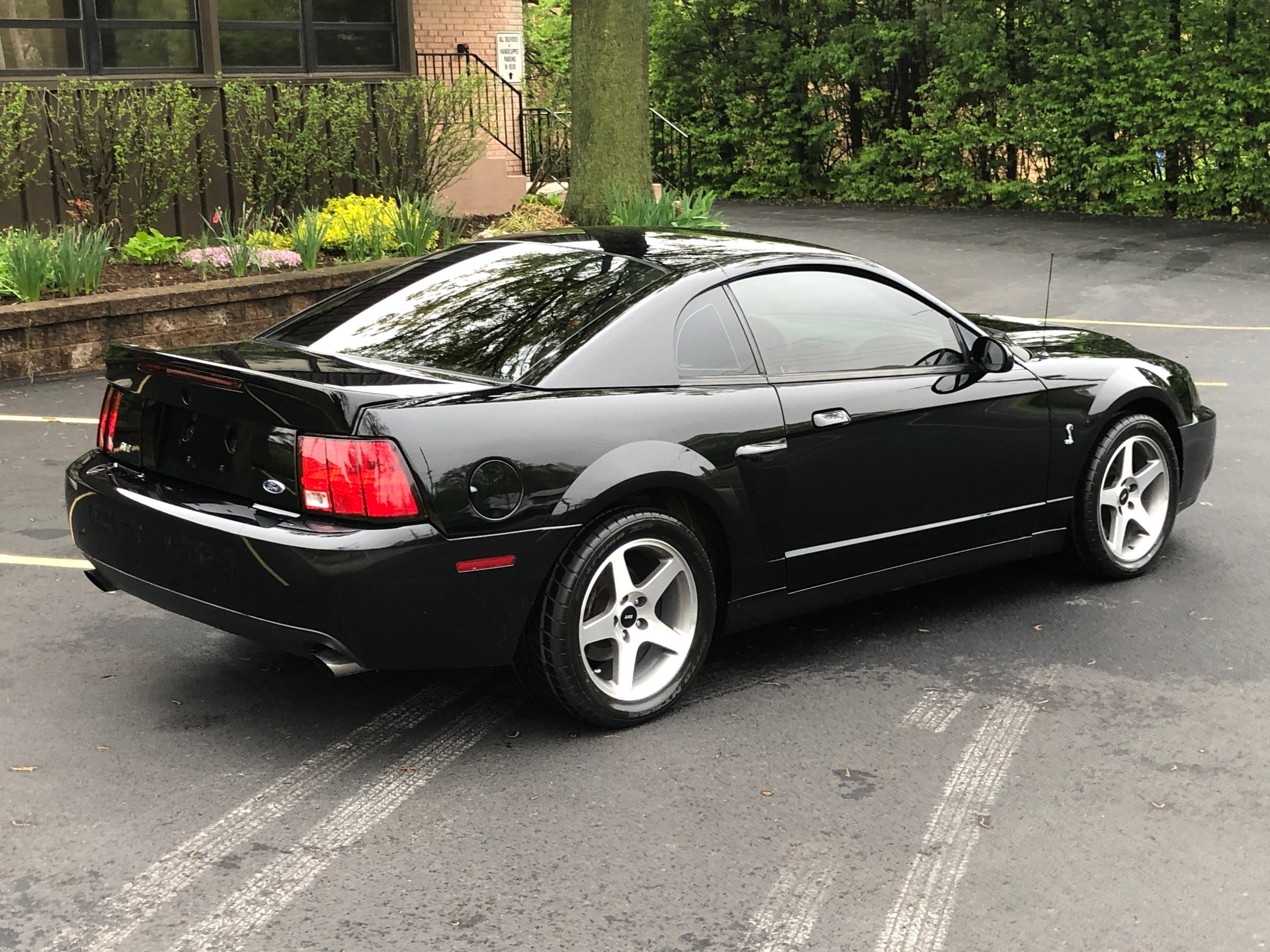 2003 Ford Mustang Svt Cobra Car Side