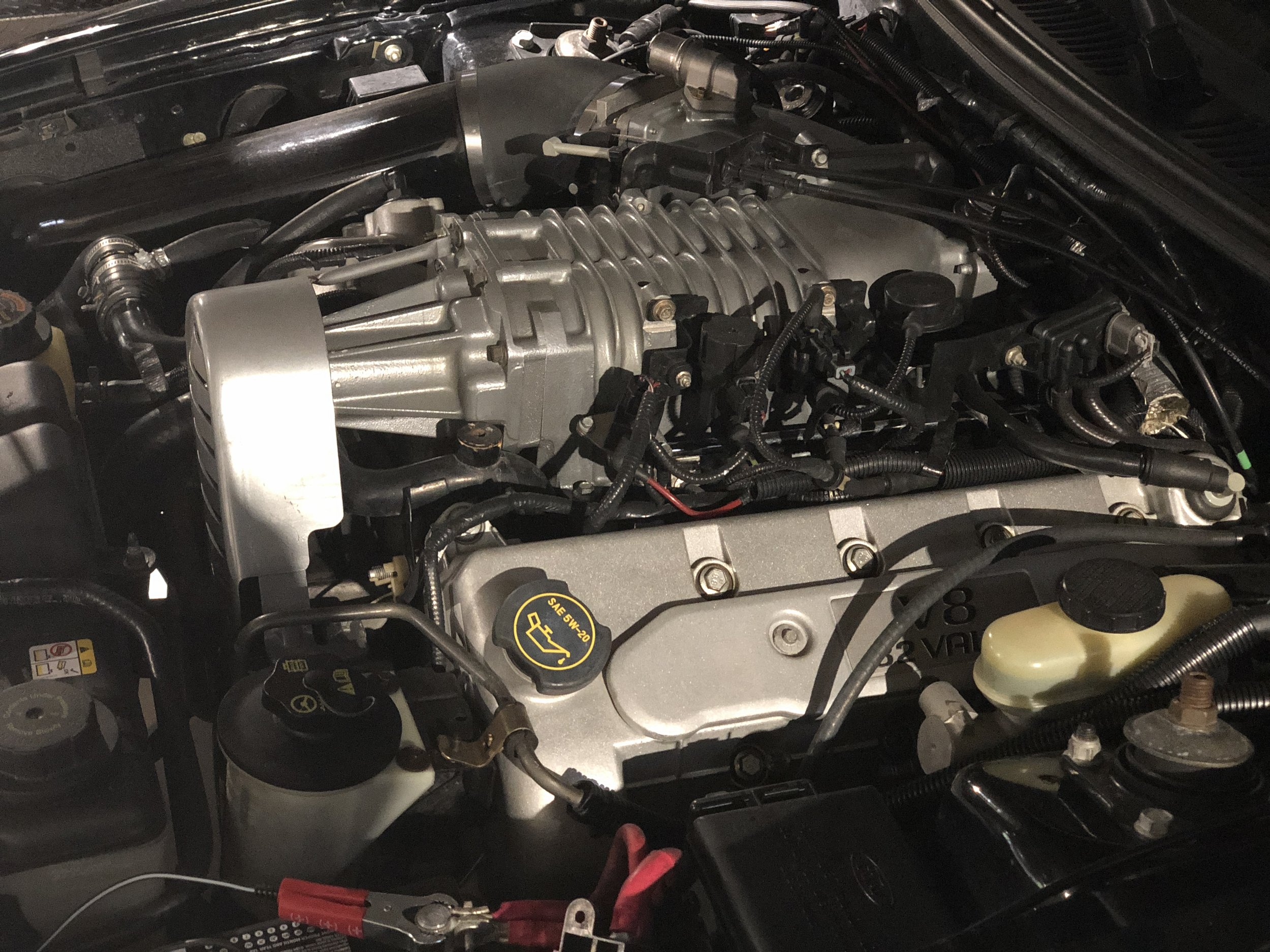 2003 Ford Mustang Svt Cobra Car Open Engine