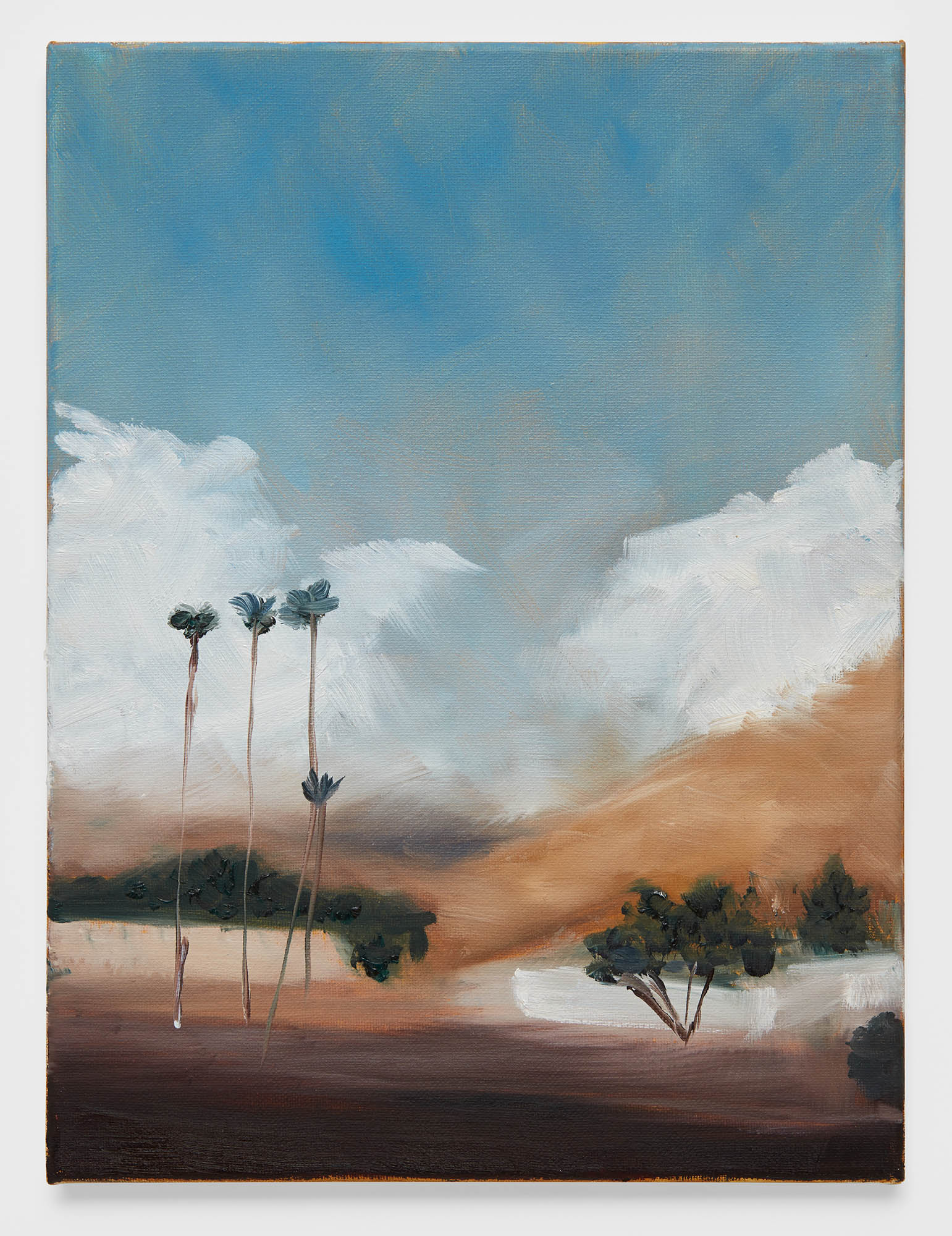 California Landscape (2018) oil on canvas, 11 x 14 inches