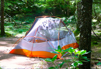 PERSONAL TENT SITE - Each forested tent site will accommodate one medium-size tent. These sites do not have picnic tables or fire pits. Fires are not allowed.